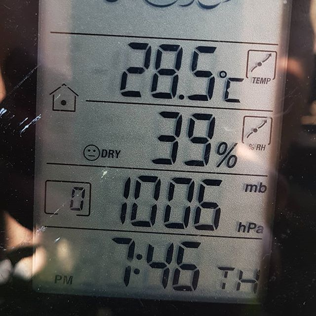 Portgordon temperature this afternoon ☀️🤪