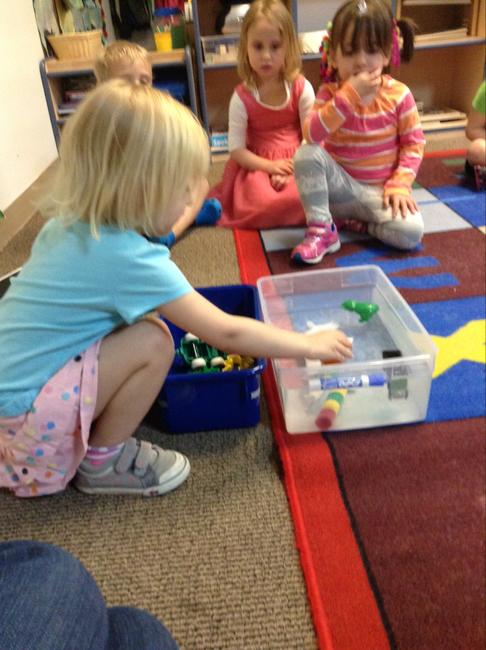 LP_Preschool_Sink or Float.png