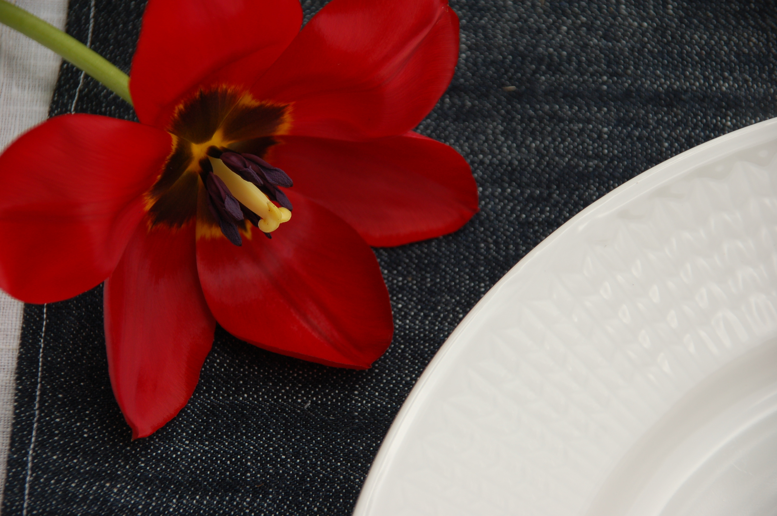 Denim and red tulips for Independence Day Tablescape