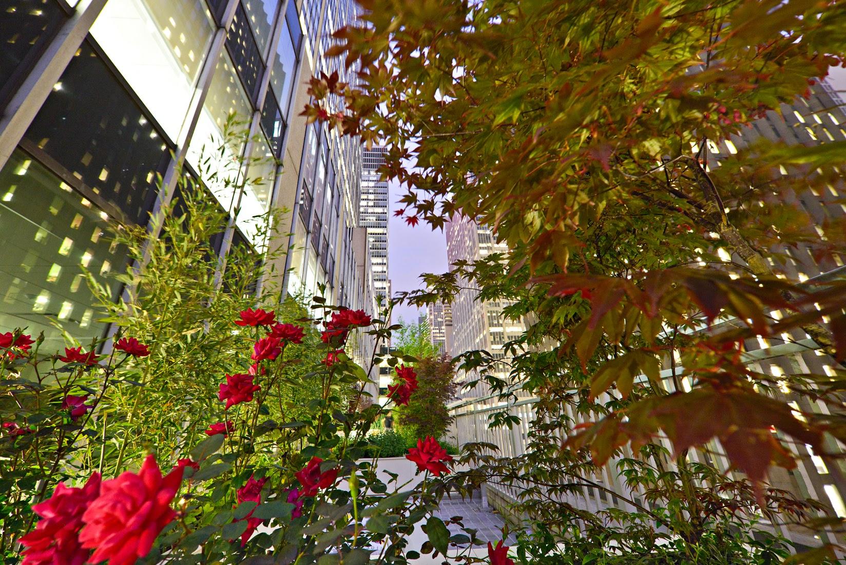 Abbott Capital—1290 Avenue of the Americas