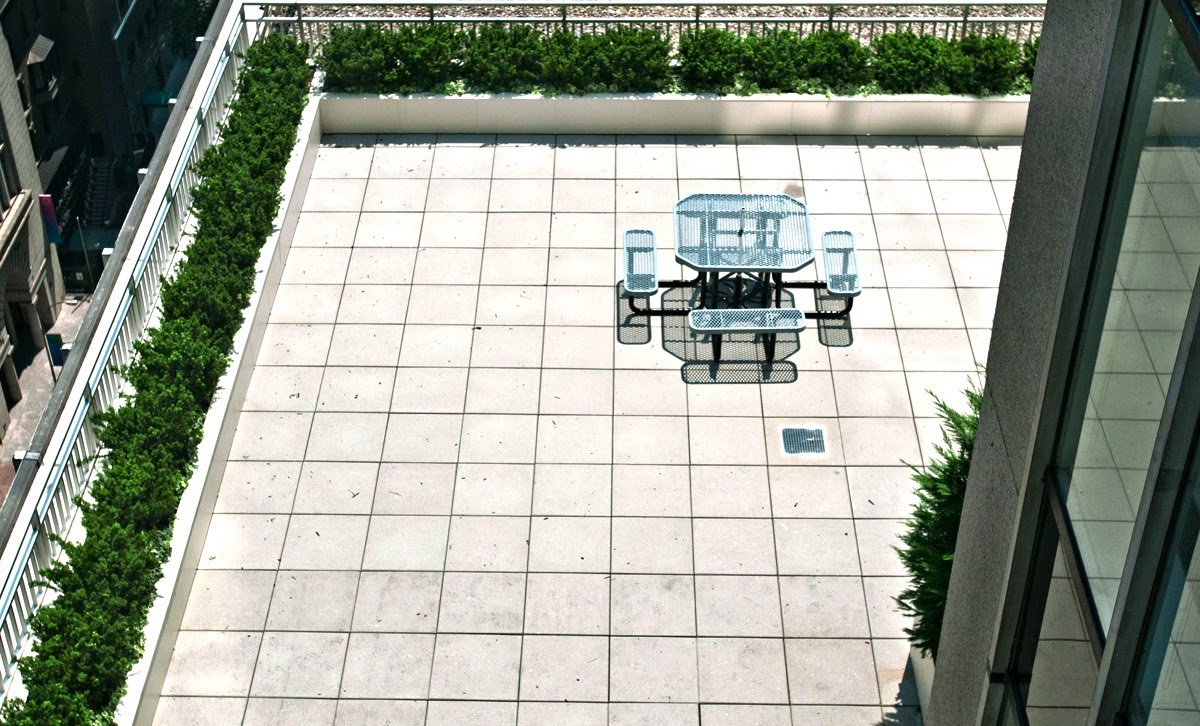 rooftopyawn.jpg
