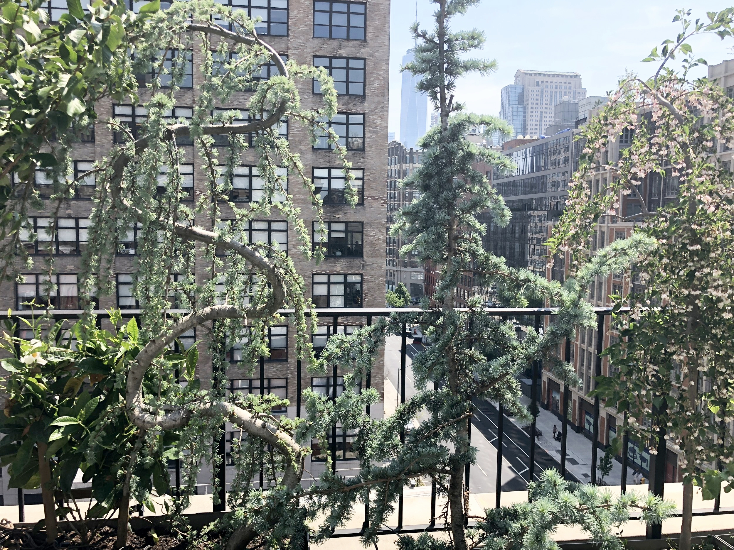 Private Rooftop-Spring Street