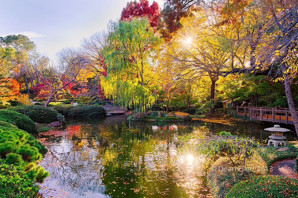 """Fall Foliage in Texas,"" Japanese Gardens, Fort Worth, TX by  dfikar via Flickr"