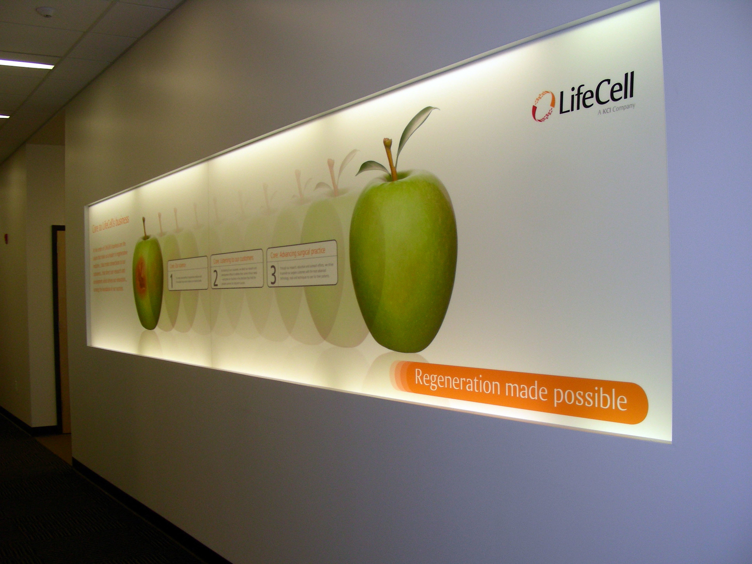 LifeCell  ©2016 PMDI Signs