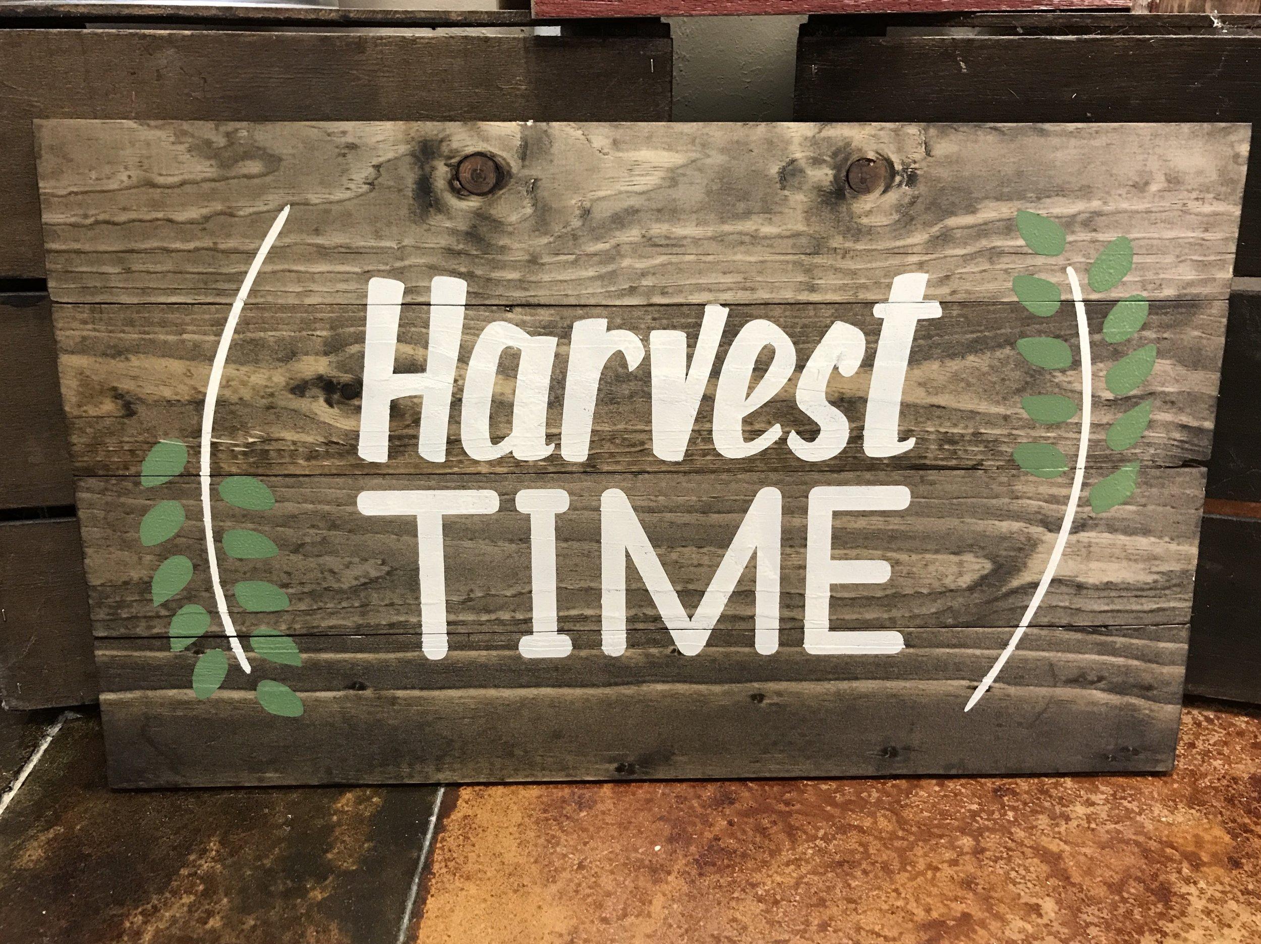 Harvest Time (BEGINNER)