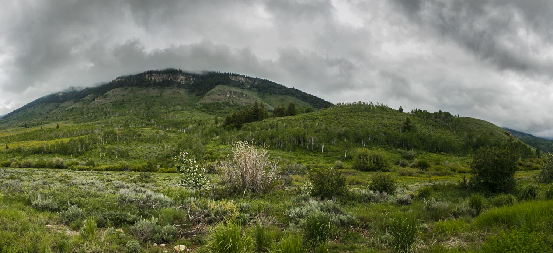 Bear Mountains.jpg