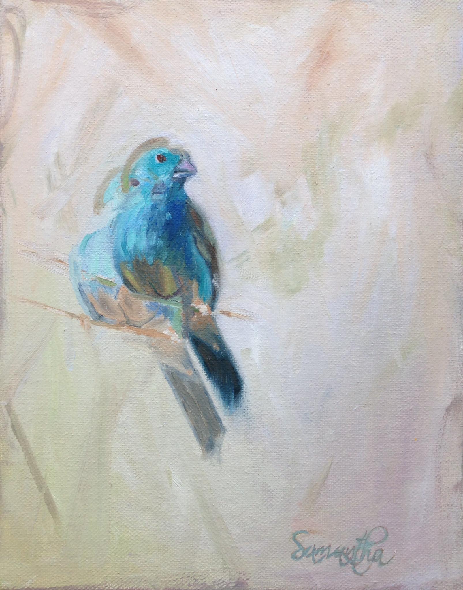 blue bird.jpeg