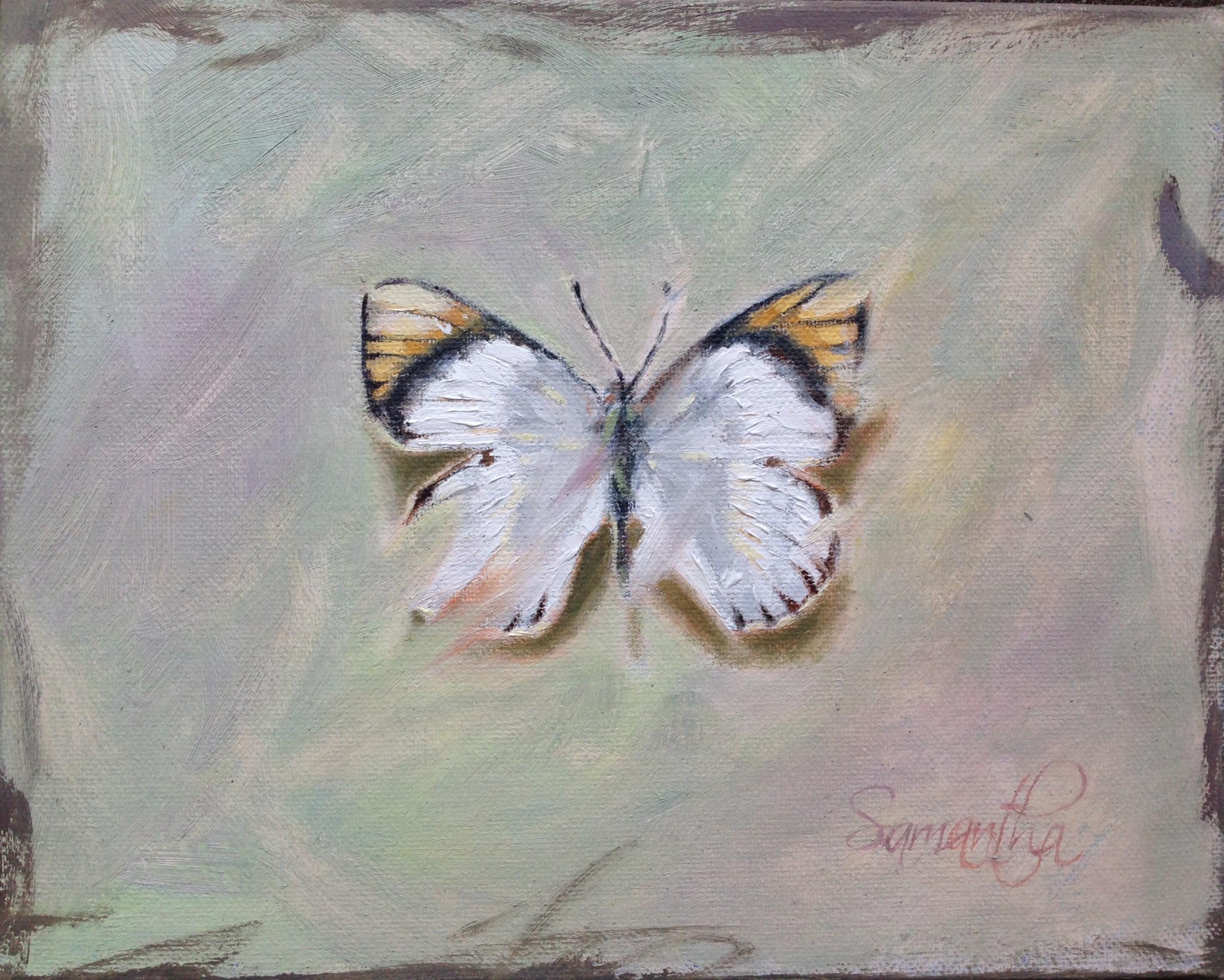 butterfly gold.jpeg