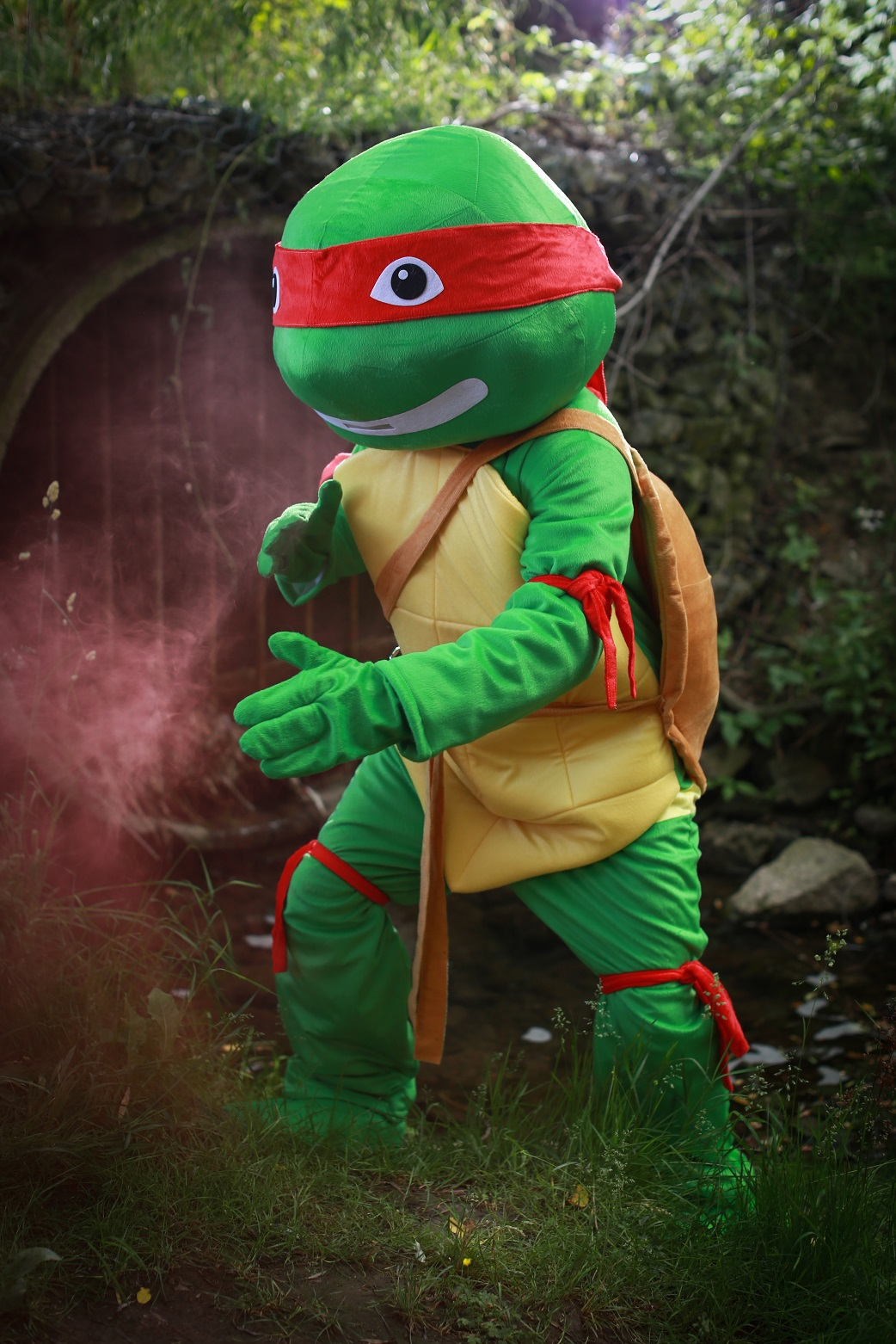 Turtle Mascot (Available in Red, Orange, Blue, and Purple)