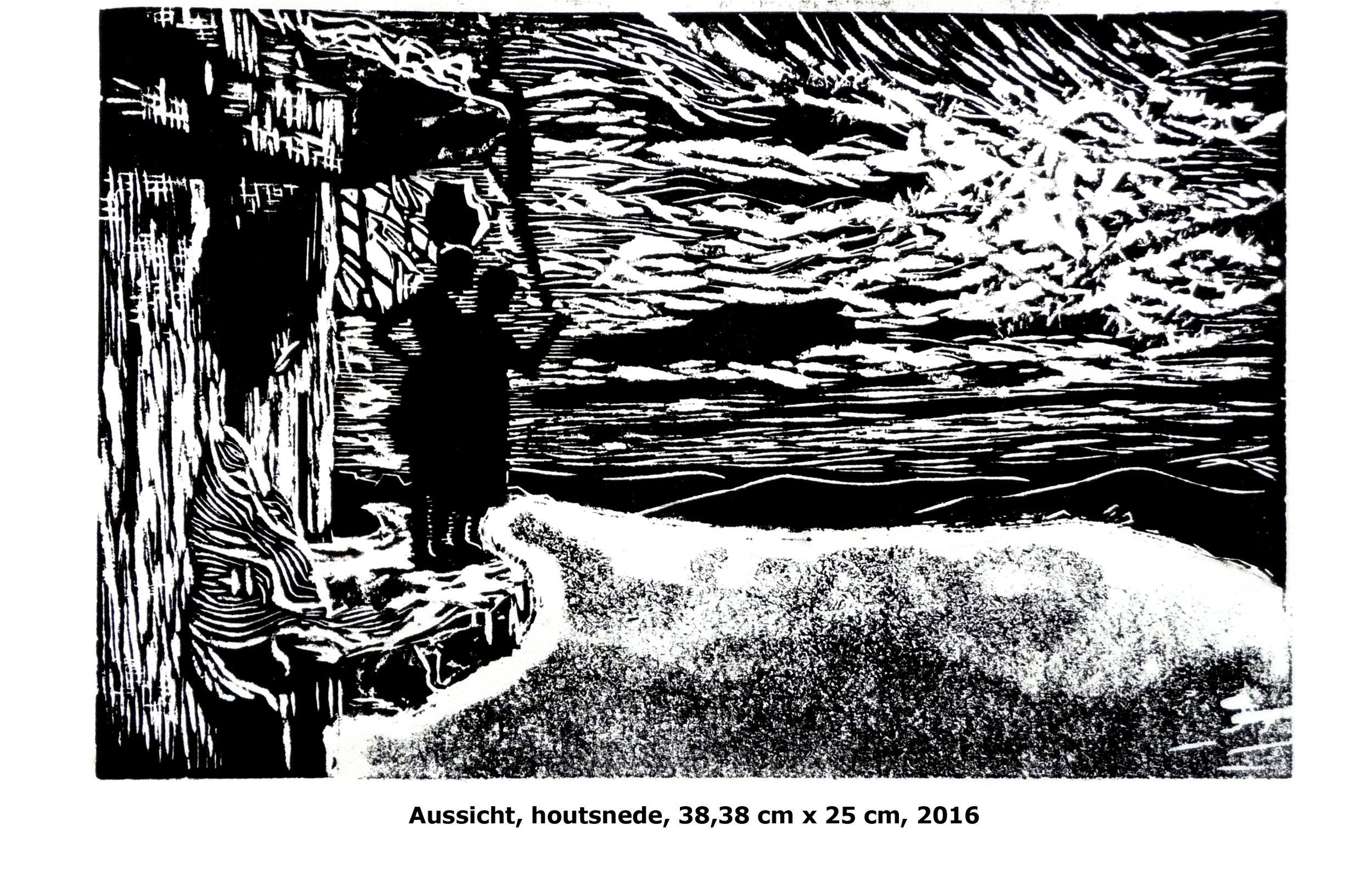 Aussicht, woodcut, 31 x 35 cm, 2016