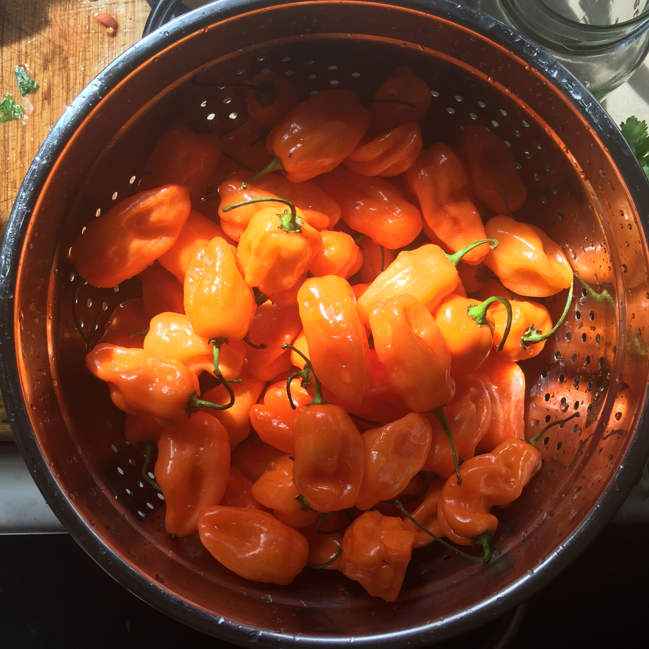 Habanero washing