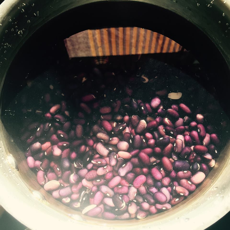 The beauty of plants: Turtle beans soaking with the purple fabric reflecting in the water.