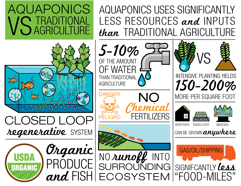 Image © 2015 Leaf & Fin Aquaponics. All rights reserved. Ask permission before using.