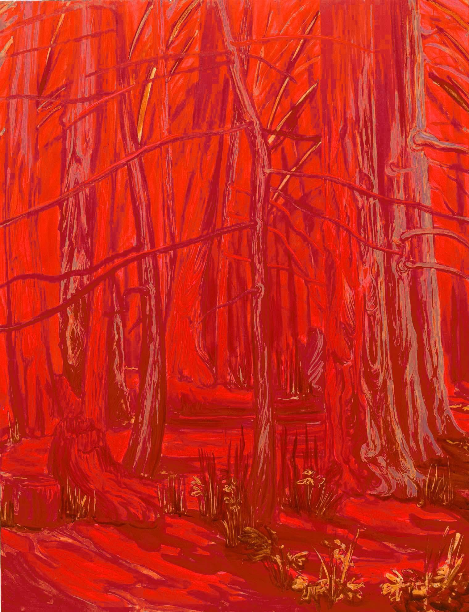 Redwood grove at Morningstar, 2008