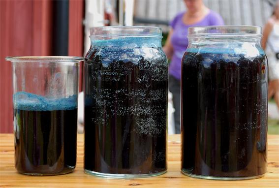 Jars of dark, indigo-containing liquid.