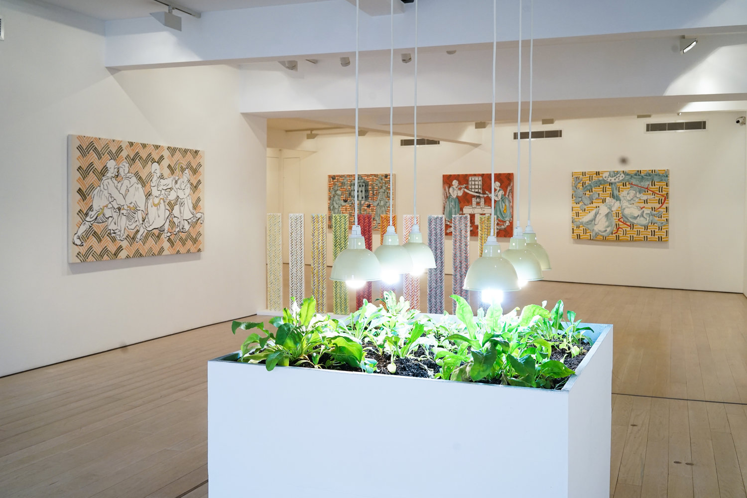 Installation view with woad growing