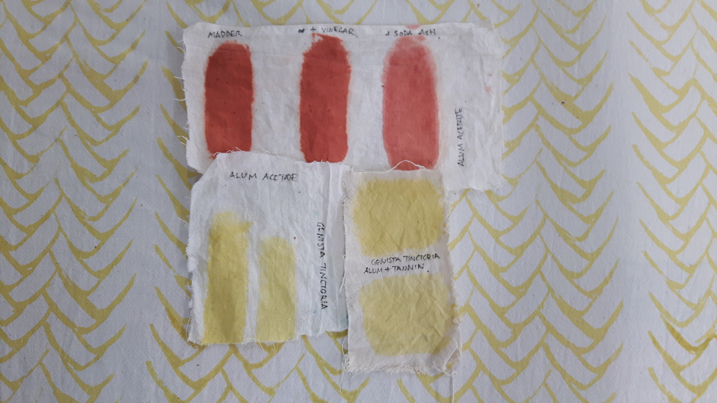 Testing mordant printing with madder and dyer's broom