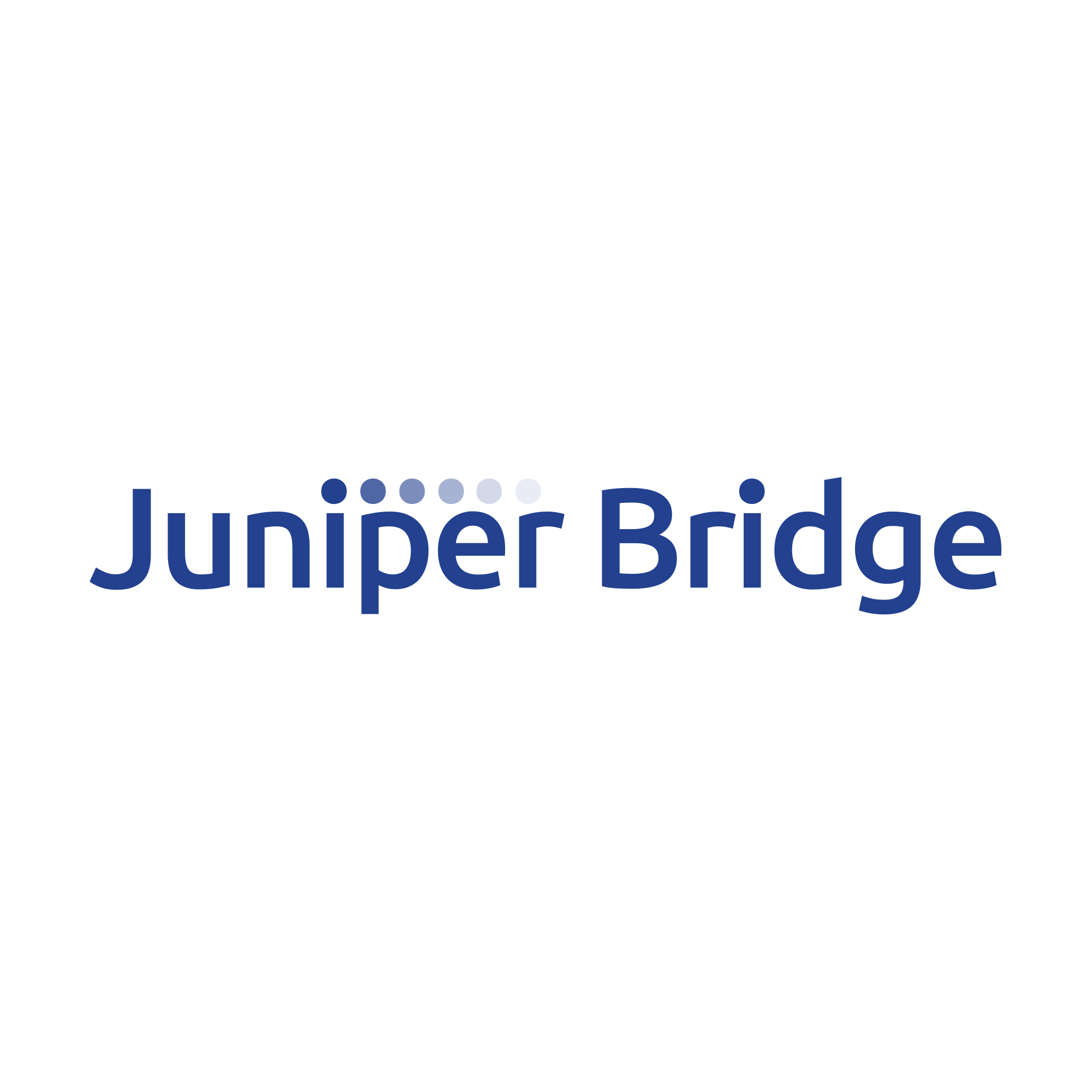 JUNIPER BRIDGE  UX,UI, BRANDING