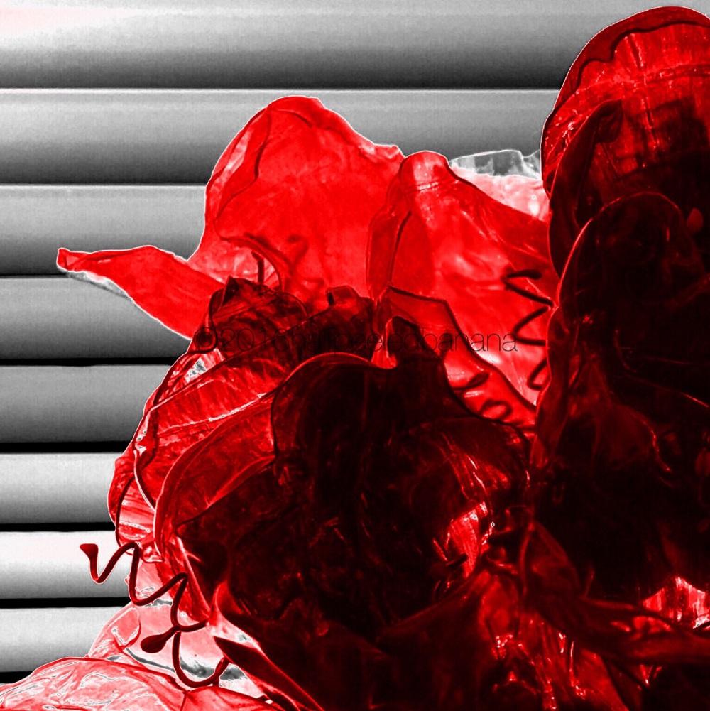 """""""red light district"""" fine art print thirsty no. 06 by ann vanatta gutierrez"""