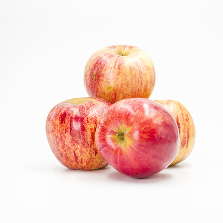 WCT_Apples_September.jpg