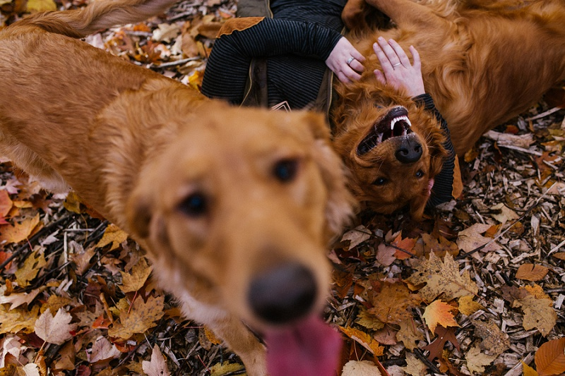 west-michigan-lifestyle-photographer-ludington-puppy-photo-journalism-session-with-abby-and-scout-9794.jpg