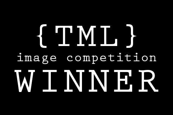 The Monochromatic Lens Image winner -