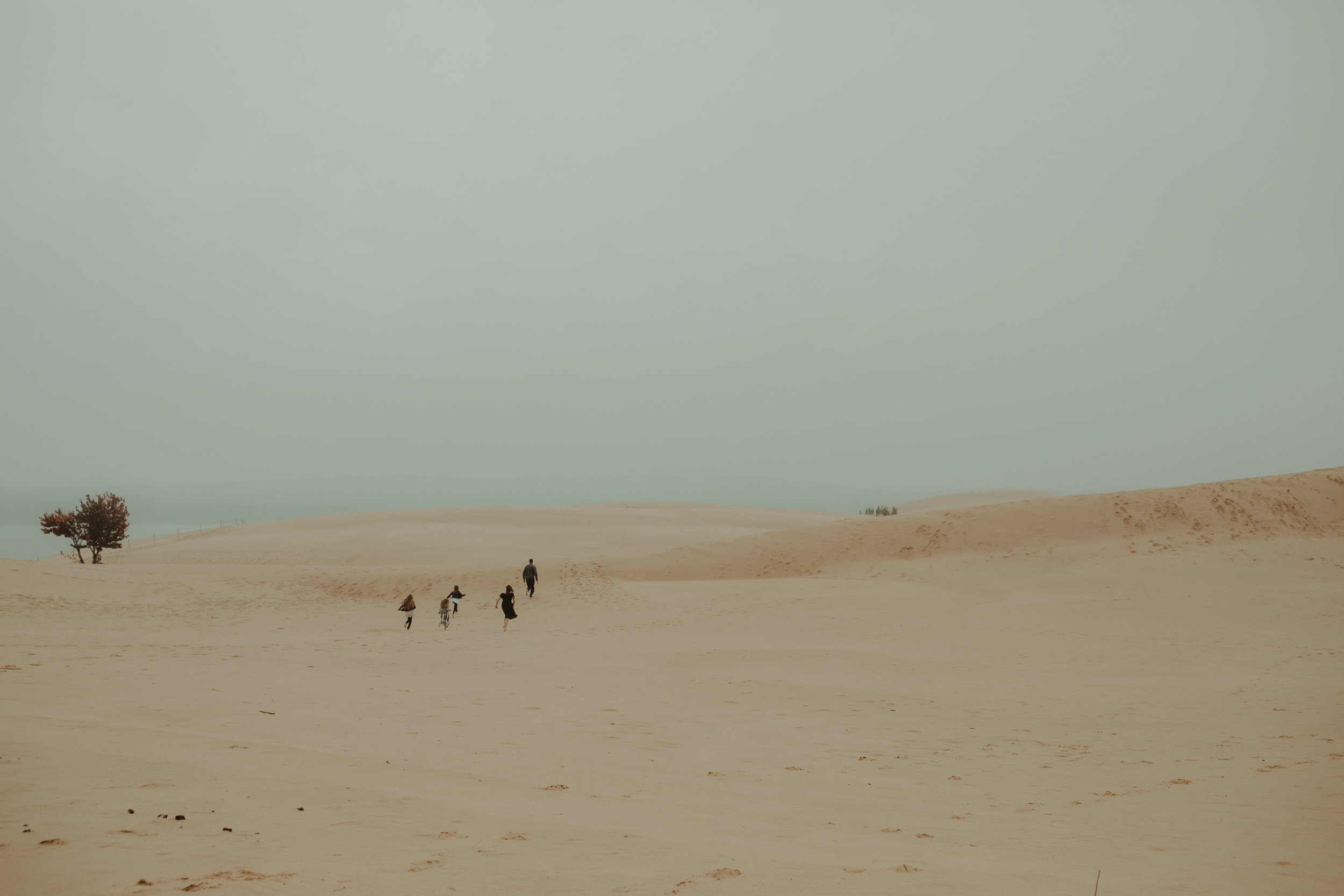 Scott-Moody-Dunes-26.jpg