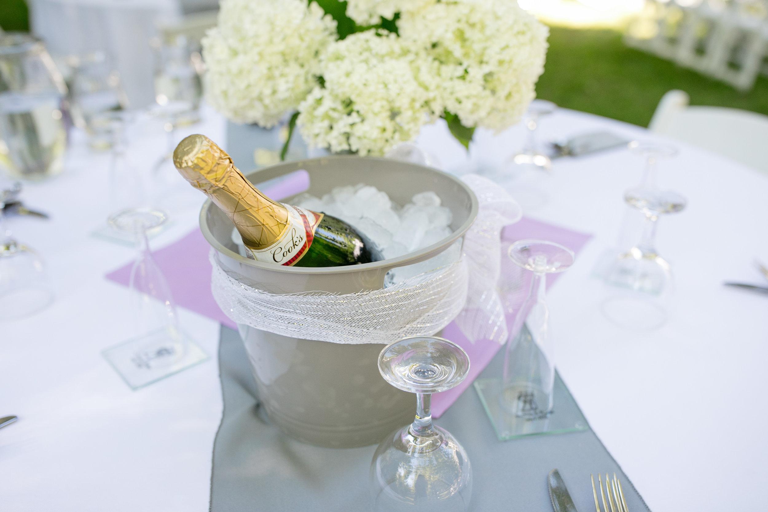 ludington-michigan-intimate-backyard-wedding-jessica-nolan160.jpg