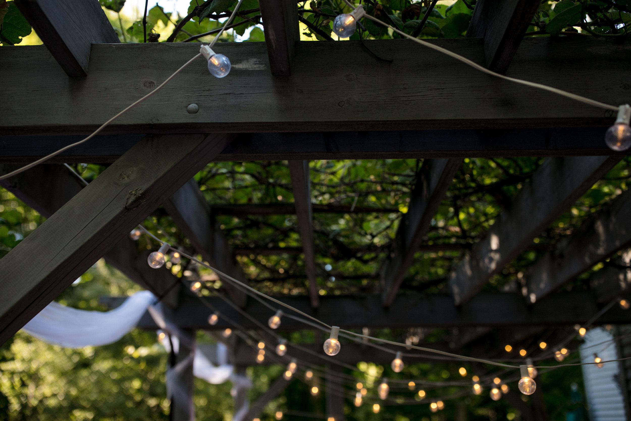 ludington-michigan-intimate-backyard-wedding-jessica-nolan196.jpg