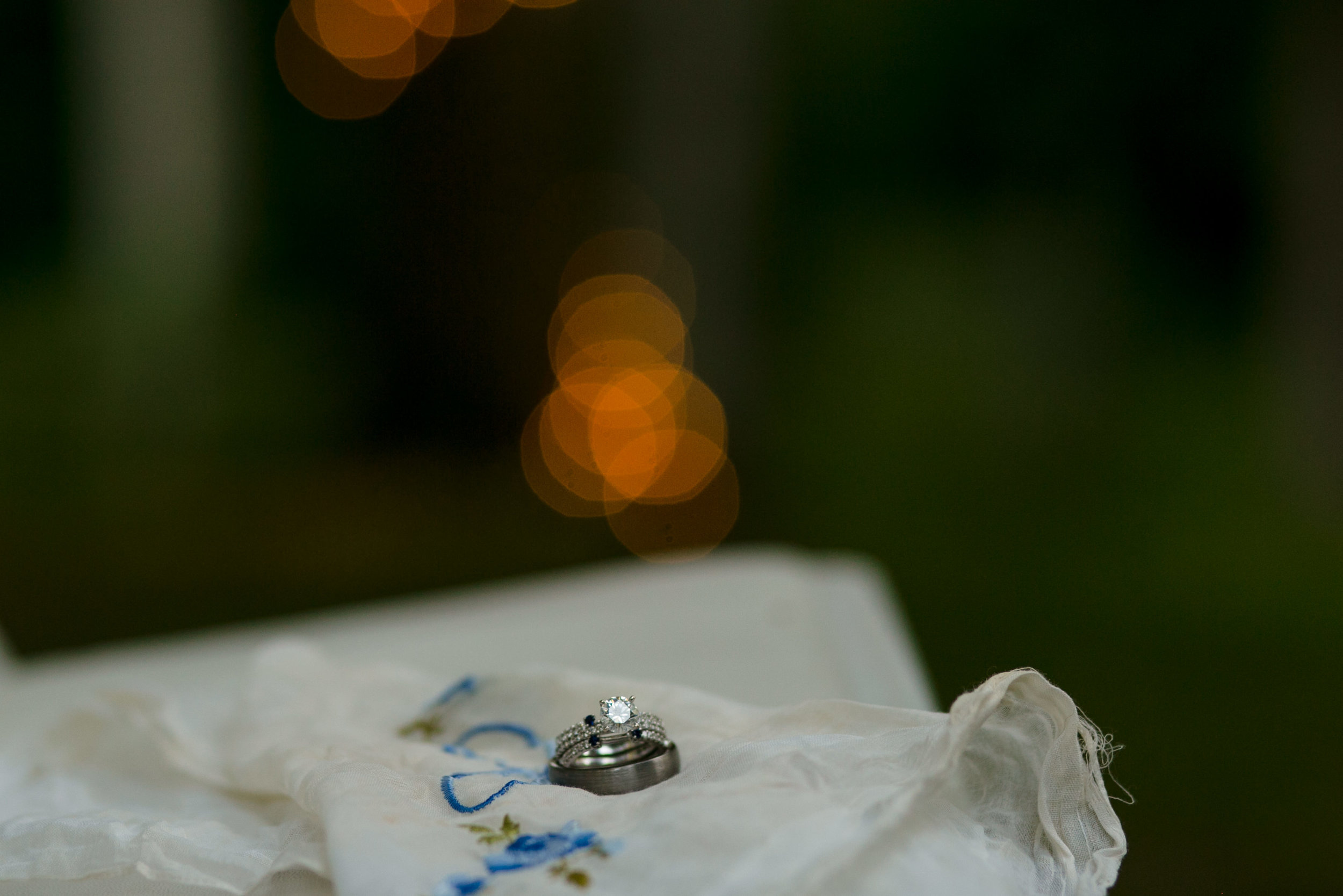 ludington-michigan-intimate-backyard-wedding-jessica-nolan383.jpg