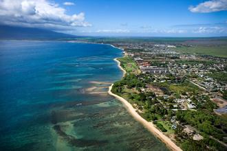 Search All Maui Listings  →