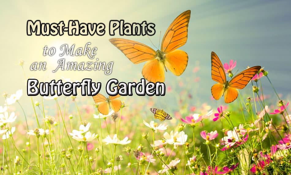 Butterfly-Garden-template.jpg