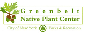 In partnership with Greenbelt Native Plant Center