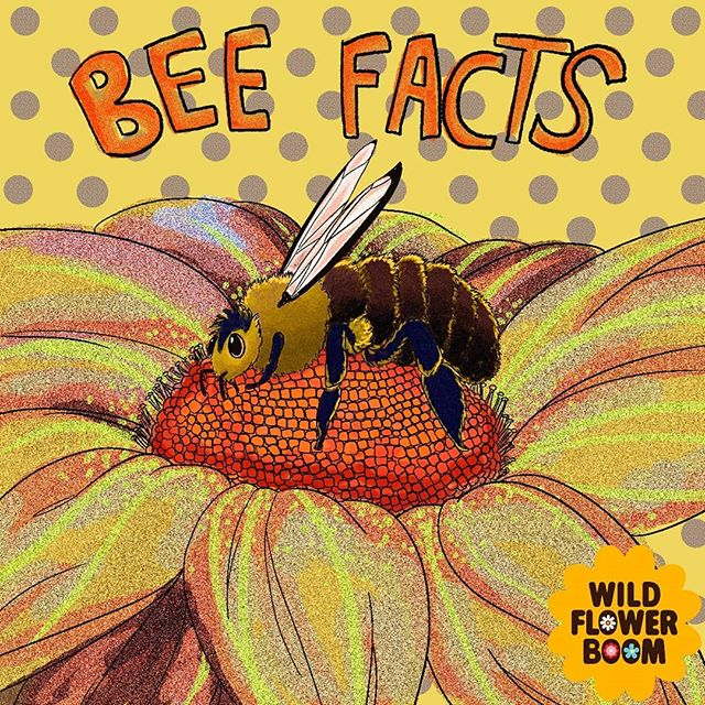#BeeFacts !  Illustrated by @lagravy.jpg  #feedthebees #honey #bees #savethebees #pollinators
