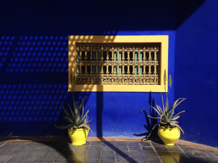 Jardin Majorelle | photo by Maleeha Sambur