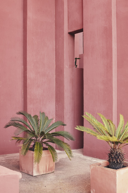 La Muralla Roja apartment complex in Alicante - Ricardo Bofill - photo by Nacho Alegre.png