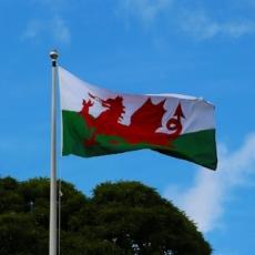 welsh-flag-2412265_1280.jpg
