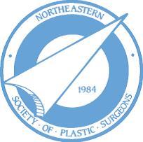 Northeastern Society of Plastic Surgeons Logo - 11-11-15.jpg