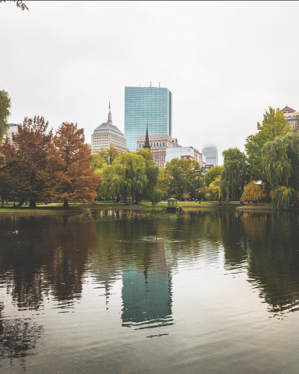 public garden boston ma