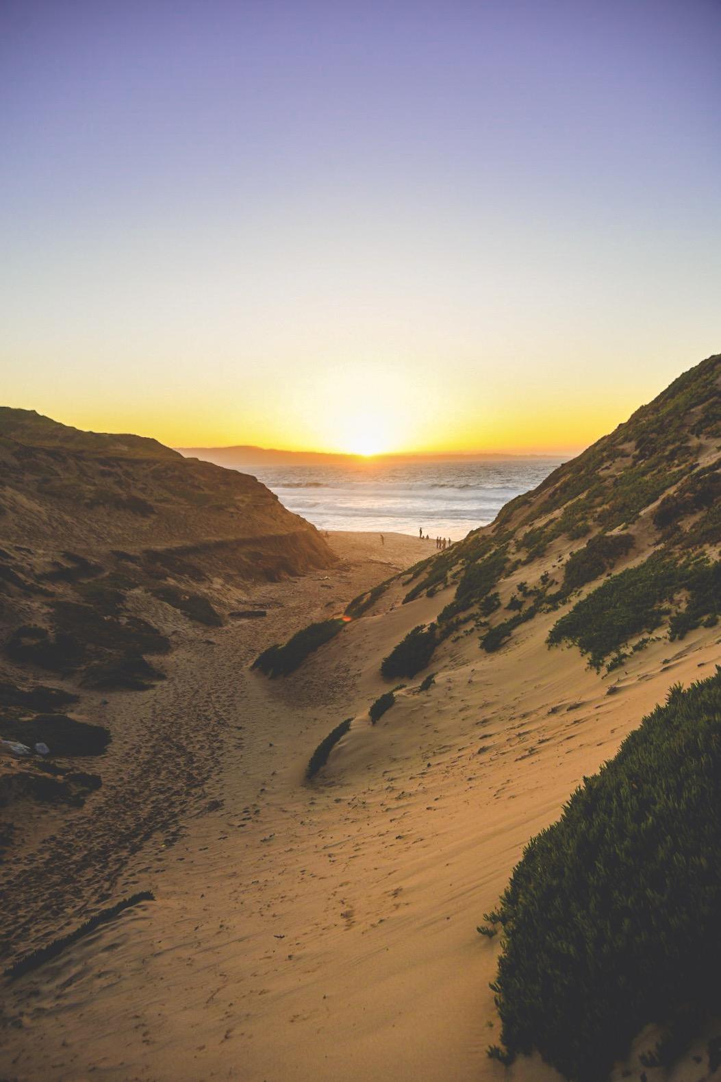 Parque Estatal Fort Ord Dunes. Foto por  Matt Davey