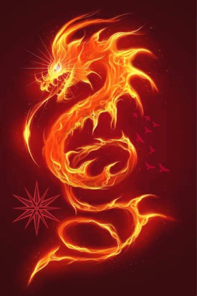 Official Fire Dragon.jpg