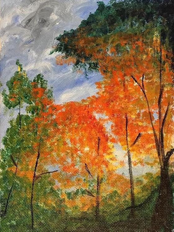 Hopkins Fall Colors.jpg