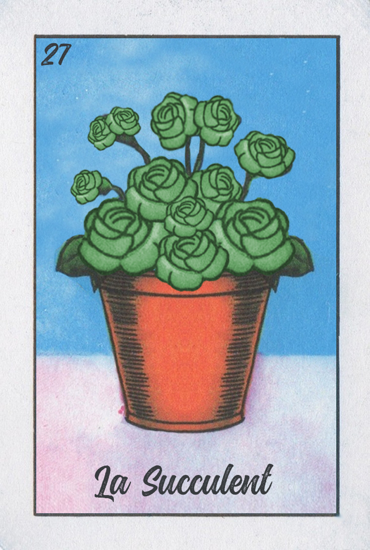 La Succulent.jpg