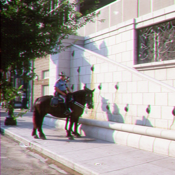 cotswald+horse.jpg