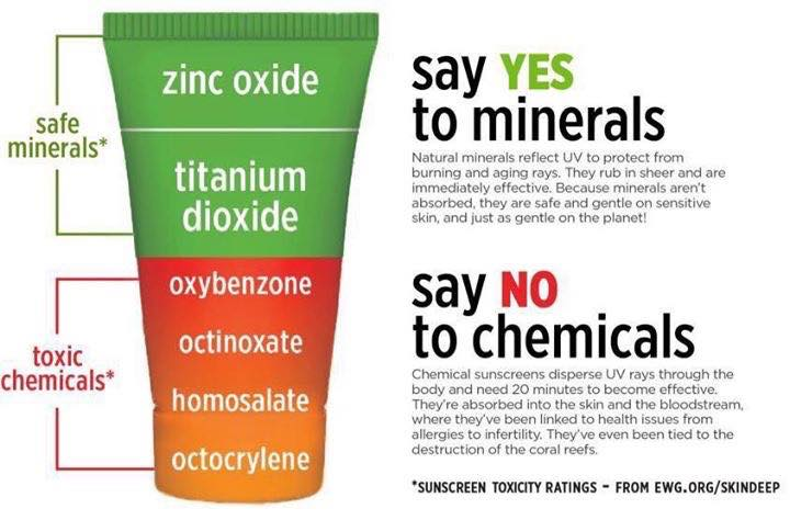 mineral vs chemical.jpg