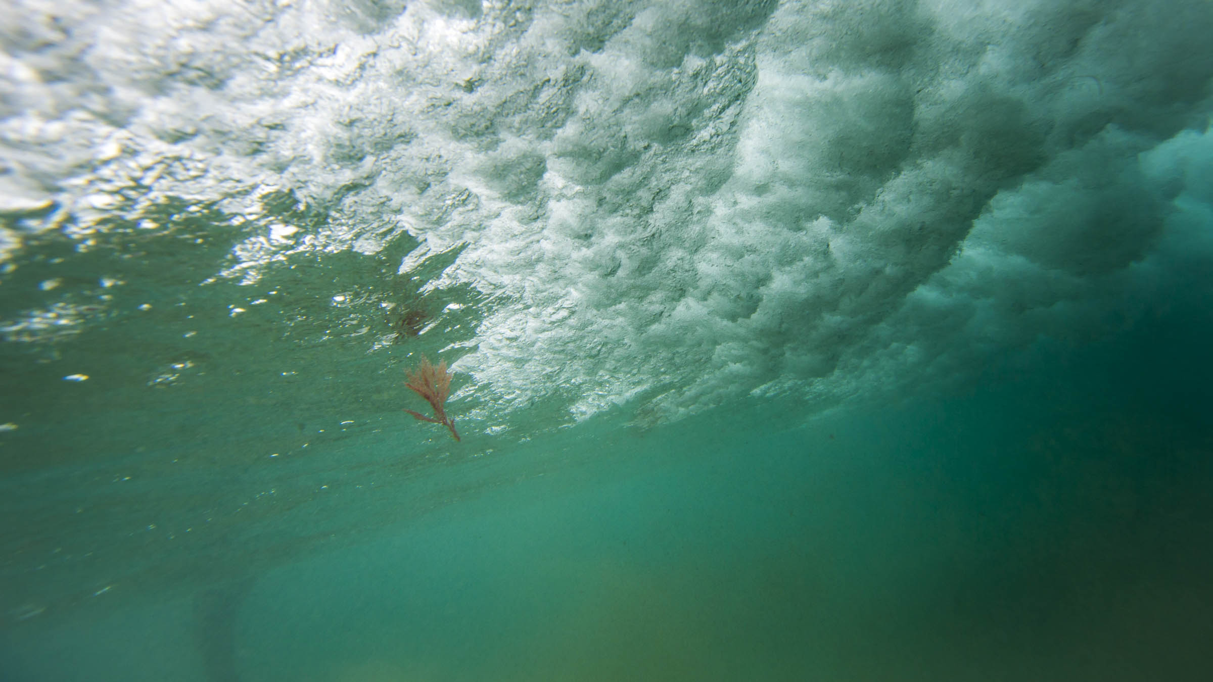 surftraxs#justallimages-0458.jpg