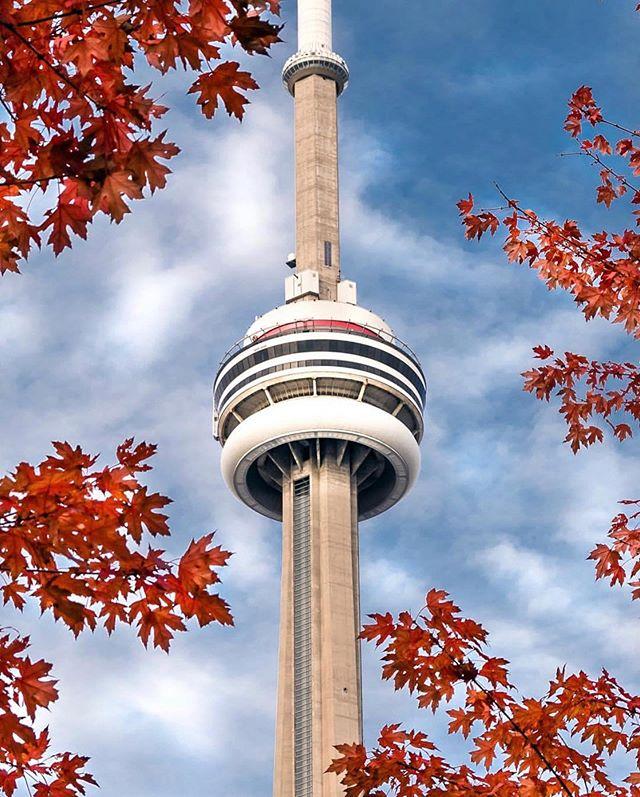 Oh Canada 🇨🇦 #TorontoForever #Raptors • 📸: @tylersjourney —  Follow!