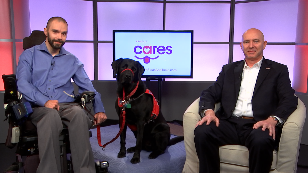 Service Dogs Set.png