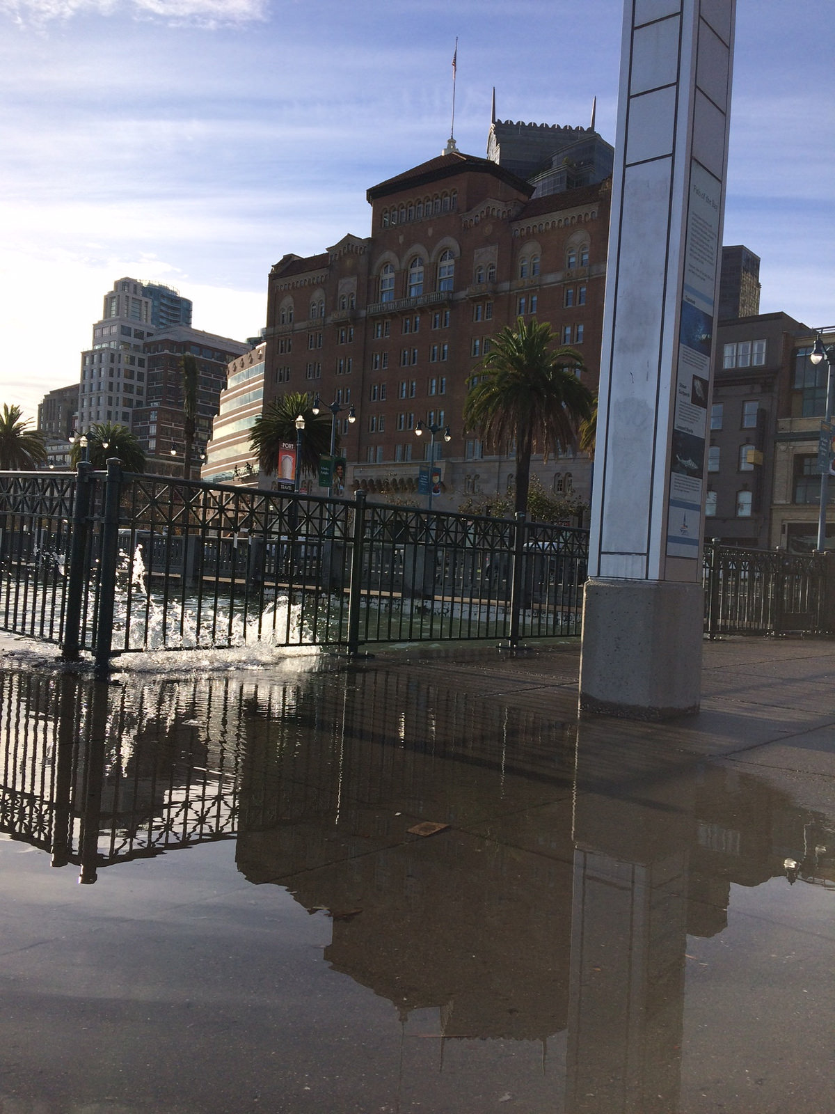Valentine Corp Sea Level Rise Experts - Bay Area - King Tides Image.jpg