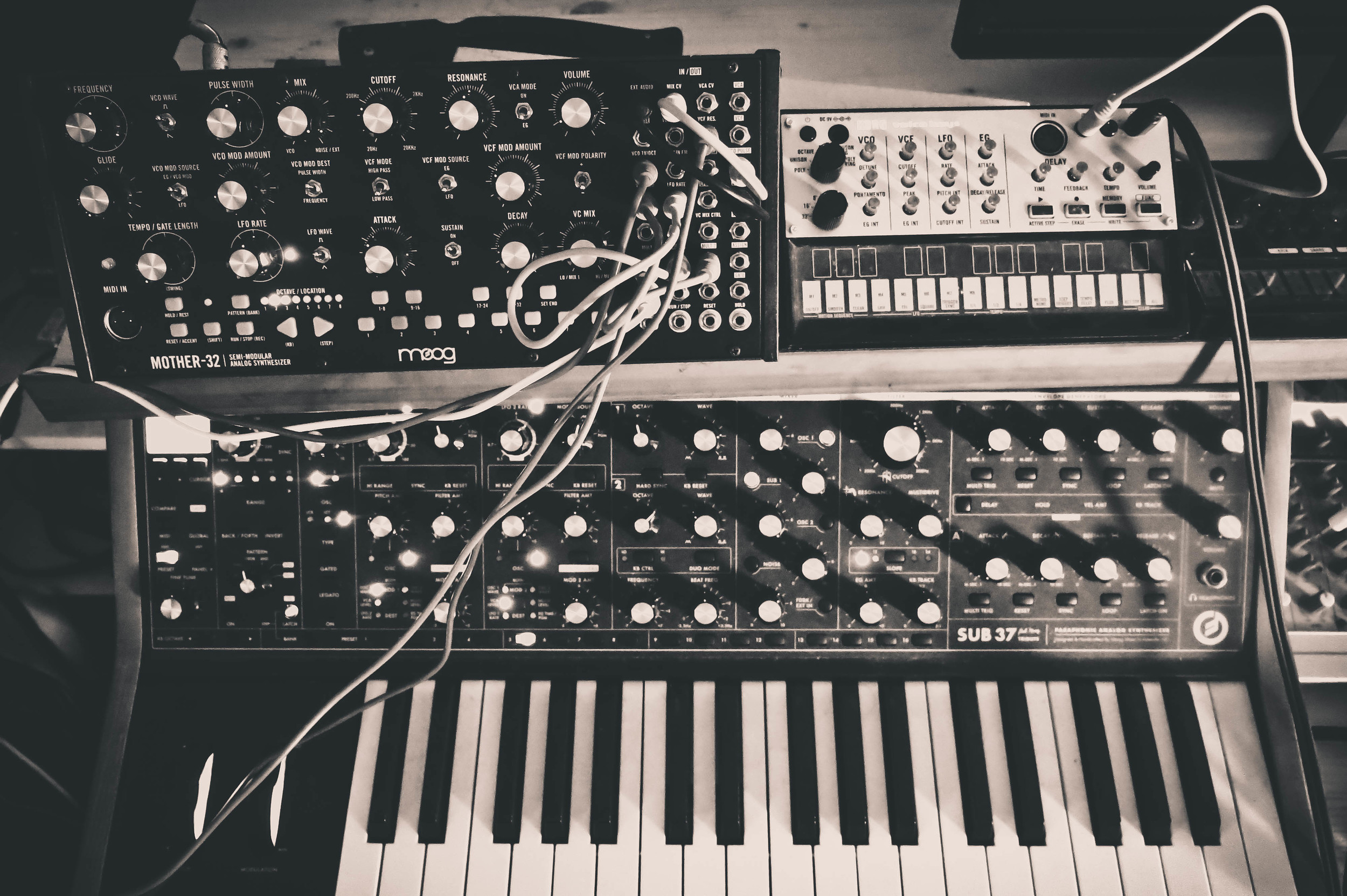 Two members of Vilmos Anomaly's Moog Family